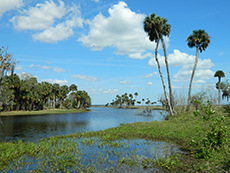 Econlockhatchee River Paddling Trail