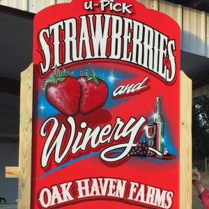 Oak Haven Farms and Winery