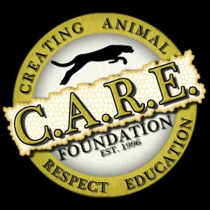 Care Foundation Education Programs