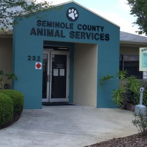 Seminole County Animal Services Educational Programs and Shelter Tours