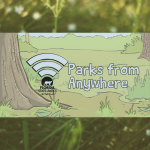 Parks from Anywhere
